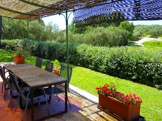 Lovely spacious apartment in agriturismo with pool, Castelnuovo Magra