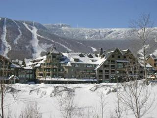 Stowe Mt. Lodge Unit 341 - Stowe vacation rentals