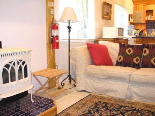 Casa De Luz Lodge with fireplace & porch overlook - Watervliet vacation rentals