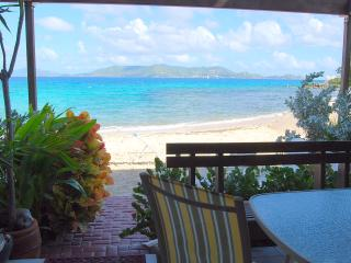 'THREE PALMS' ~Beachfront Condo ON Sapphire Beach, St. Thomas