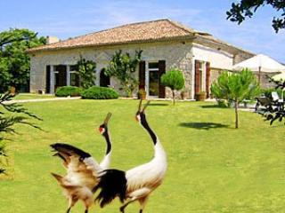 Historic Villa 4 bedrooms with pool SW  France, Montaigu-de-Quercy