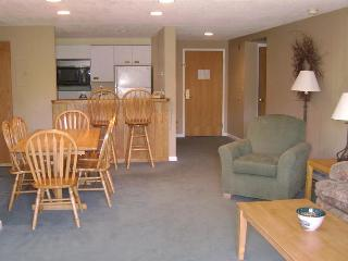 Beautiful Family Vacation Hotel Condo Rental, Lincoln