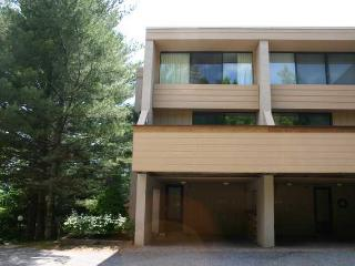 Notchbrook Condo 17 - Stowe vacation rentals