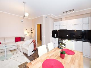 Comfortable apartment in Gdansk