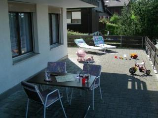 LLAG Luxury Vacation Apartment in Emmetten - 710 sqft, central, quiet, convenience (# 4362), Gersau