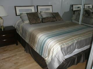Furnished Suite Downtown Toronto Better Than  Hote