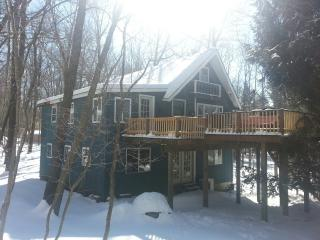 LET IT SNOW..PRIVATE LARGE CHALET..RELAX & ENJOY, Pocono Lake
