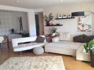 Luxury 125sqm Flat, Central with Terrace, Munich