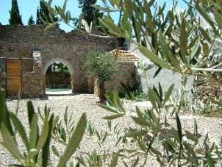 Luxury gites in village in heart of the Languedoc, Ferrals-les-Corbieres