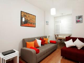 New Flat in the Heart of Cihangir, Istanbul