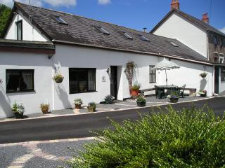 MAESACHDDU FARM COTTAGE - Carmarthenshire vacation rentals