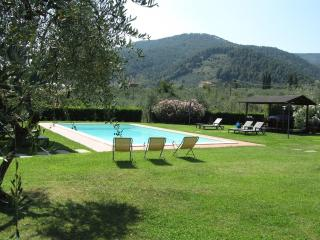Casa Marisa - Wonderful villa in Lucca country sid