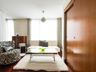 Chic, luxury, Studio in the heart of Montreal