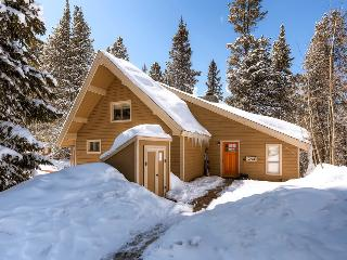 Cozy cabin with hot tub and free shuttle to the slopes (pet friendly, shuttle on demand 2014/15 season) - Barton Creek Lodge, Breckenridge