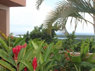 Bayview with Pool Suite, Isla de Vieques