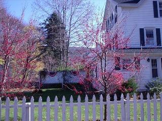 Charming Village- Great House, Housatonic