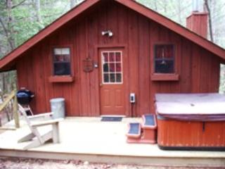 Back porch area with hot tub - Smoky Getaway  Hiden wooden mountain jewel. - Townsend - rentals