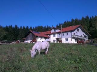 LLAG Luxury Vacation Apartment in Achslach - 807 sqft, comfortable, nice view, beautiful (# 4477)