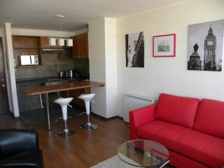 1 bedroom apartment, Park view and Bellavista, Santiago