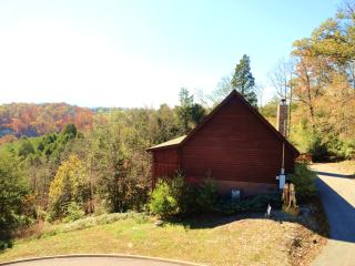 THIS CABIN IS SECLUDED NEARLY SURROUNDED BY WILDERNESS, ENJOY THE PEACE THAT NATURE HAS TO GIVE GIVE
