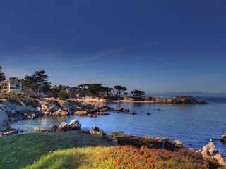 **Free Aquarium Tickets! 1 Block to the Ocean - Pacific Grove vacation rentals