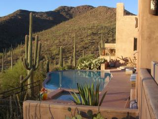 Lovely secluded zero edge pool overlooking Sonoran Desert