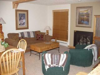 Lovely Affordable Vail 2bd/2ba condo with pool and hot tubs near lifts