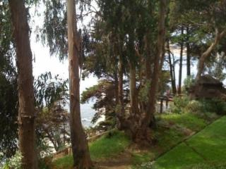 Ocean and forest view apartment in Horcon, Puchuncaví