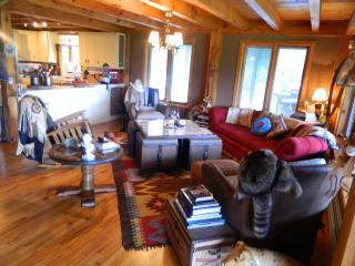 Super Luxury Berkshire Ski Get Away - Berkshires vacation rentals