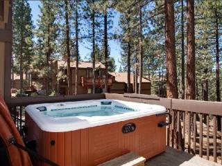 Tahoe Lake Village 57 Burke Creek Circle NV (BCC57, Zephyr Cove