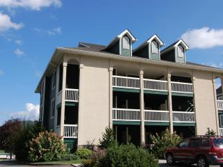 Mountain Memories condo - Jefferson vacation rentals
