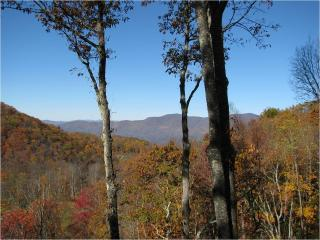 Luxurious Mountain Home with Panoramic Views - Sylva vacation rentals
