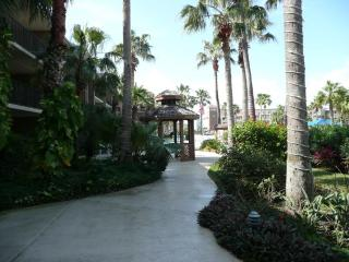 Luxurious Condo with Olympic Size Pool, Isla del Padre Sur