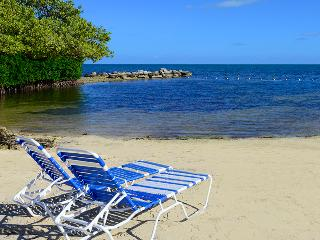 OCEANFRONT CONDO WITH ALL AMMENITIES!, Tavernier