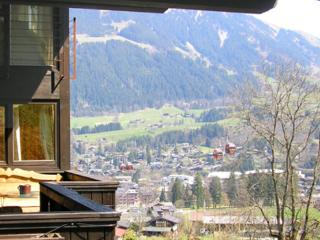 Holiday apartment for max. 4 persons  with lovely terrace  - AT-549099-Kitzbühel - Kitzbühel vacation rentals
