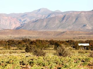 WOLVEKRAAL GUEST FARM in the Great Karoo, Prince Albert