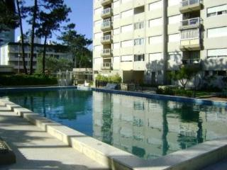Punta del Este - Maldonado Department vacation rentals