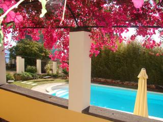 HIGH LIGHTS: VIEW, POOL, LOCATION, FAST WIFI, PARK, Funchal