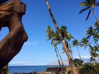 Premium views in the heart of Kihei