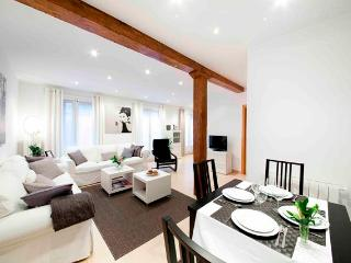 Bellas Artes - Basque vacation rentals
