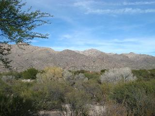 1 Bedrm/Den with Fantastic Mountain Views-Open floor plan- King bed in Master, Tucson