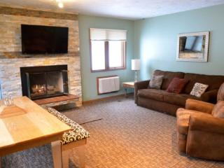 Recently Remodeled 3 Bedroom, 2 Bath Mountain Villa Condo - Walk to Waterpark and Boyneland Ski Run, Boyne Falls