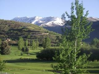 Wintergreen - Close to Park City, Soldier Hollow and Middle Provo River, Midway