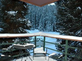 Very cozy ski in/out 2 bed 3 bath with LOTS of room for 6.  Condo sleeps 8, Winter Park
