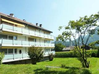 Apt/Niesenblick ~ RA9939 - Interlaken vacation rentals