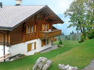 Haus C ~ RA10167 - Interlaken vacation rentals