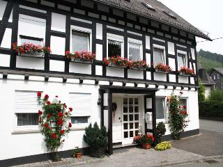 Cozy apartment between Winterberg and Willingen surrounded by the highest mountains of the Upper Sauerland, Bruchhausen