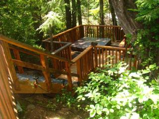 Forest View Cabin Private Hottub next to Cox Bay, Tofino