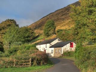 MAES-Y-FELIN, woodburner, en-suite facilities, rural views, upside down accommodation, detached cottage near Ffarmers, Ref. 18734, Ffaldybrenin