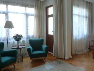 Large Duplex 3 bdr apartment in centre of Istanbul